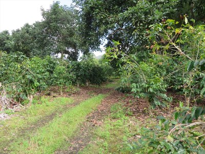 Captain Cook Residential Lots & Land For Sale