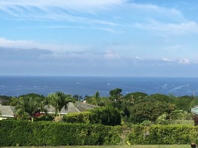 Kailua-kona Single Family Home For Sale: 75-319 Puia Rd
