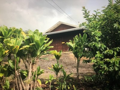 Hilo Single Family Home For Sale: 27-1981 Kaaukai Pl