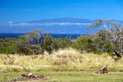 Hawi, Kapaau Residential Lots & Land For Sale: 56-135 Pualani Road