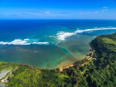 Kauai County Residential Lots & Land For Sale: 3971 Aloalii Dr