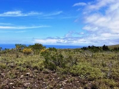 Hawi, Kapaau Residential Lots & Land For Sale: 392 Ka Nani Dr #LOT #392