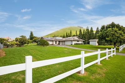 Kamuela Single Family Home For Sale: 65-1225 Puu Opelu Rd