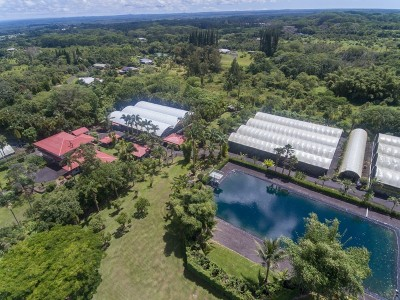 Hawaii County Business Opportunity For Sale: 17-4365 Huina Rd