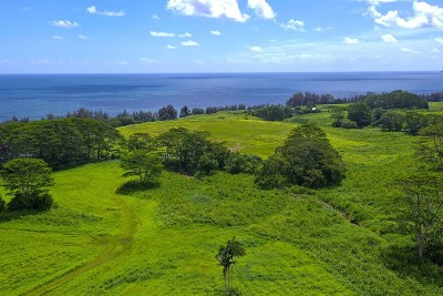 Hawaii County Residential Lots & Land For Sale: Old Railroad Way