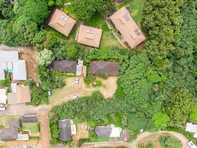Single Family Home For Sale: 4777 Iiwi Rd