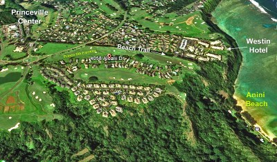 Kauai County Residential Lots & Land For Sale: 4058 Aloalii Dr