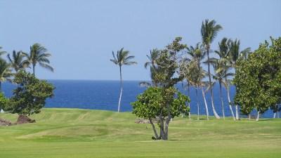 Hawaii County Residential Lots & Land For Sale: 68-1002 Konane Ct