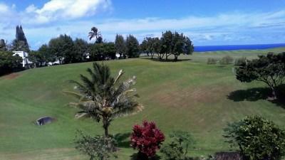Kauai County Residential Lots & Land For Sale: 3875 Kamehameha Rd #2