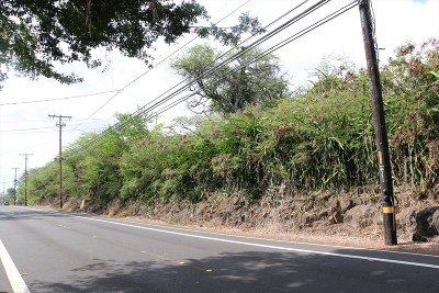Kailua-Kona Residential Lots & Land For Sale: Alii Dr