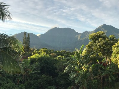 Kauai County Residential Lots & Land For Sale: 5339 Honoiki Rd