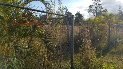 Hawaii County Residential Lots & Land For Sale: 11-1865 Alani St