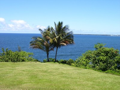 Hilo Single Family Home For Sale: 27-108 Hikina Pl