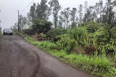 Hawaii County Residential Lots & Land For Sale: Road 4 (Io Kea)