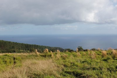 Hawaii County Residential Lots & Land For Sale: 36-584 Manowaiopae Homestead Rd