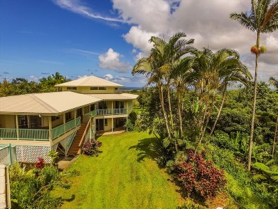 Hilo Single Family Home For Sale: 229 Makana Nui Ln