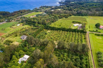 Hawaii County Residential Lots & Land For Sale: 29-198 Chin Chuck Rd