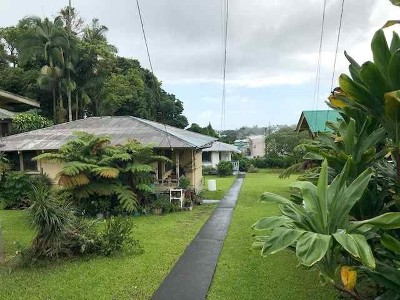 Hilo Single Family Home For Sale: 237 Kapiolani St