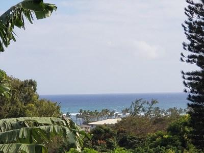 Kauai County Residential Lots & Land For Sale: 4720 Pelehu Rd #2
