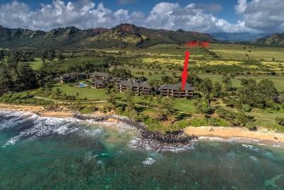 Kauai County Condo/Townhouse For Sale: 4460 Nehe Rd #226