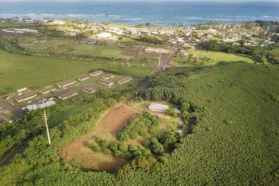 Kauai County Single Family Home For Sale: 4701 Olohena Rd