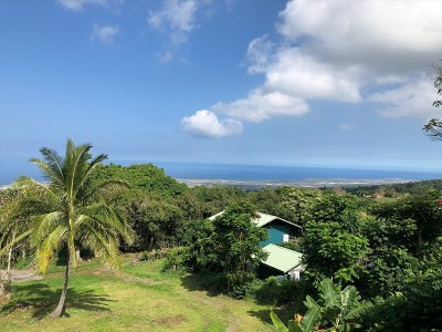 Hawaii County Residential Lots & Land For Sale: 75-5324-C Mamalahoa Hwy