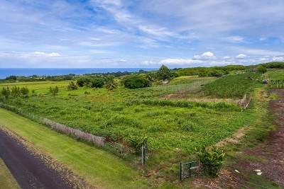 Hawaii County Residential Lots & Land For Sale: Kaupakuea Rd.