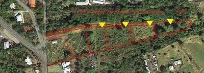 Hawaii County Residential Lots & Land For Sale: 79-7155 Huliau Pl
