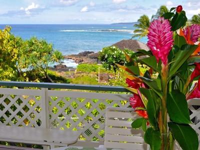 Kauai County Single Family Home For Sale: 1791 Pee Rd