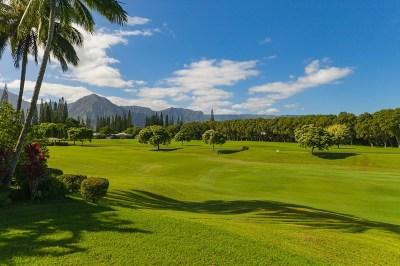 Kauai County Residential Lots & Land For Sale: 4124 Aloali'i Drive