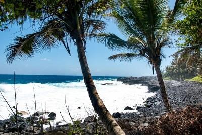 Hawaii County Residential Lots & Land For Sale: 12-7789 Kalapana Kapoho Beach Rd