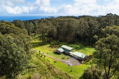 Single Family Home For Sale: 46-4019 Puaono Rd