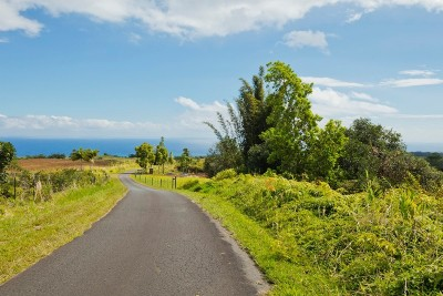 Hawaii County Residential Lots & Land For Sale: Kamaee Road