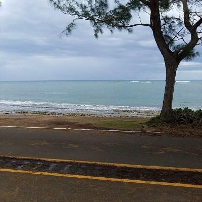 Kauai County Residential Lots & Land For Sale: 1025 Moanakai Rd