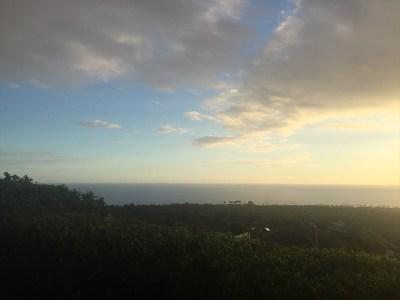 Kailua-Kona Single Family Home For Sale: 75-6110 Paulehia St