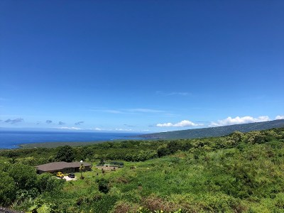 Hawaii County Residential Lots & Land For Sale: 85-5110 Kiilae Rd