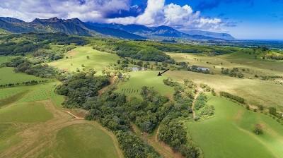 Kauai County Residential Lots & Land For Sale: Kapuna Road #1