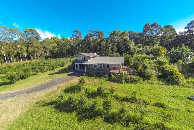 Holualoa HI Single Family Home Contingent: $495,000
