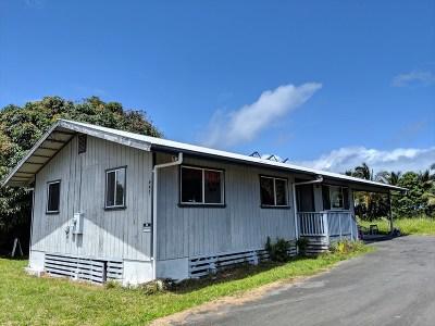 Hilo Single Family Home For Sale: 447 Nahale-A Ave