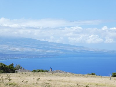 Kohala Ranch Residential Lots & Land For Sale: 459 Kanaloa Dr