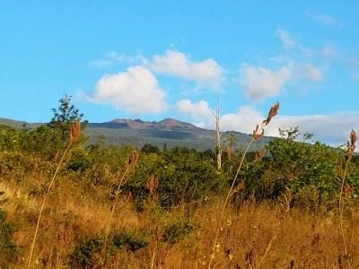 Kailua-Kona Residential Lots & Land For Sale: Lalei Street