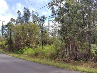 Residential Lots & Land For Sale: Plumeria St.