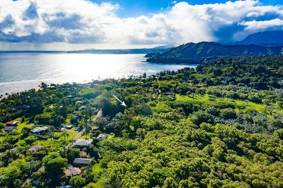 Kauai County Residential Lots & Land For Sale: 7228 Alamihi Rd