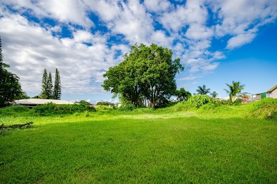 Hawaii County Residential Lots & Land For Sale: 1623 Kinoole St