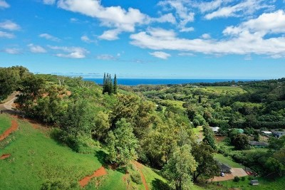 Kauai County Residential Lots & Land For Sale: Kaumualii Hwy