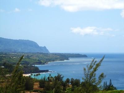 Kauai County Residential Lots & Land Contingent: Makana'ano Pl #2