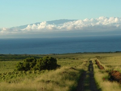 Hawi, Kapaau Residential Lots & Land For Sale: Lincoln Avenue