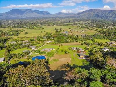Kauai County Residential Lots & Land For Sale: 820 Kamalu Rd #C