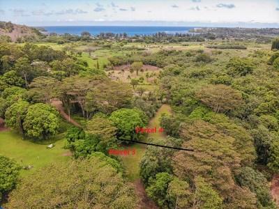 Kauai County Residential Lots & Land For Sale: Kumu Rd