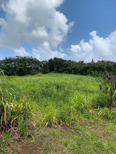 Kauai County Residential Lots & Land For Sale: 3180 Hikina Rd